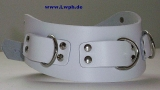Super Leder-Halsbänder mit Nieten 5,0 cm breit verschweißten Ringen anatomisch geformt mit Farbkombinationen